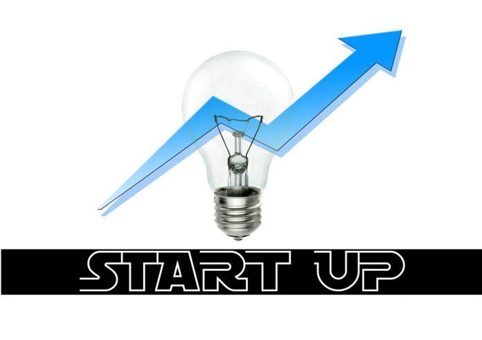 startup thrive